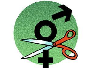 gender-enders-320x320